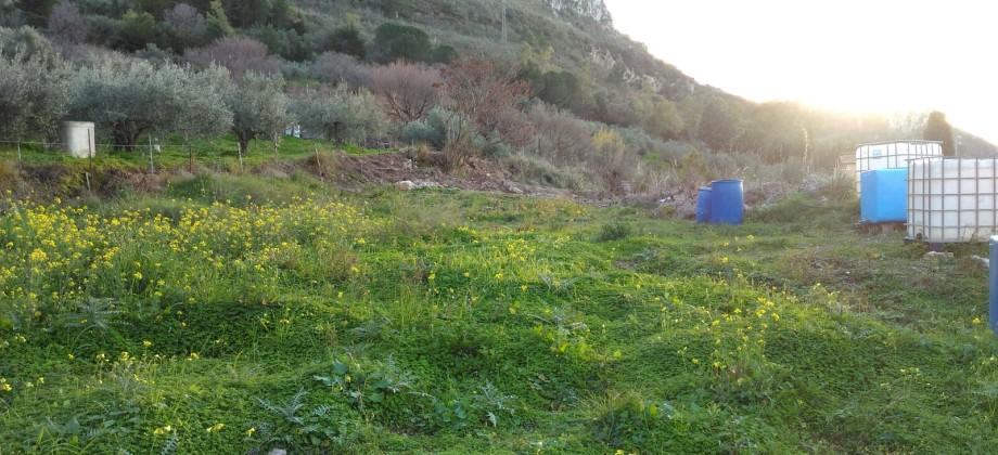 Rif 100T (  Terreno Agricolo in C/da Pampalone)